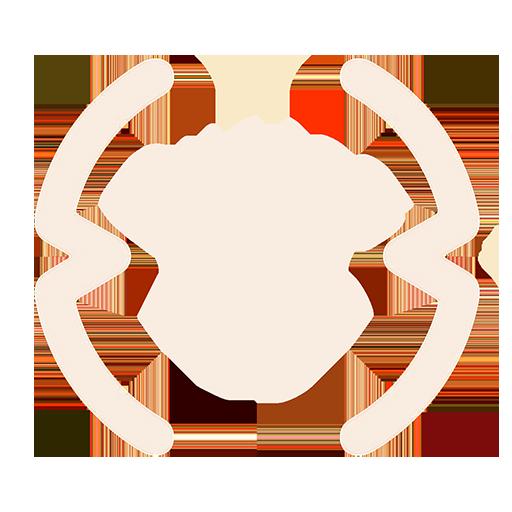 Quesos DOP